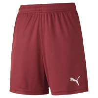 Puma teamGOAL 23 Knit Jr Shorts cordovan Kinder