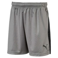 Puma LIGA Jr Shorts steel grey-black Kinder