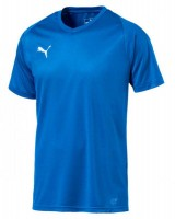 Puma LIGA Core Trikot electric blue-white Herren