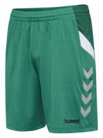 Hummel Tech Move Poly Shorts SPORTS GREEN Herren