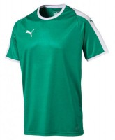 Puma LIGA Trikot pepper green-white Herren