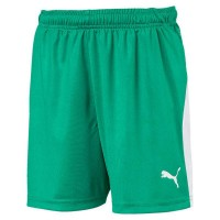Puma LIGA Jr Shorts pepper green-white Kinder