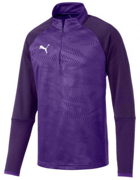 Puma CUP Training Jr 1/4 Zip Top Core prism violet-indigo Kinder