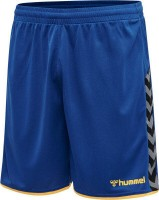Hummel Authentic Poly Shorts blue-yellow Herren