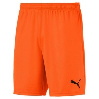Puma teamGOAL 23 Knit Shorts golden poppy Herren