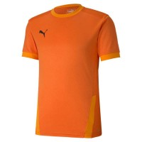 Puma teamGOAL 23 Trikot golden poppy-orange Herren