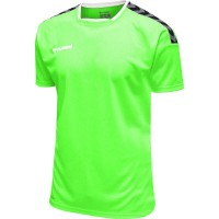 Hummel Authentic Poly Trikot GREEN GECKO Kinder