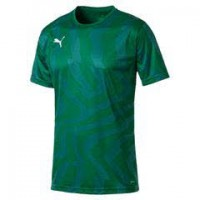 Puma CUP Core Trikot pepper green-white Herren