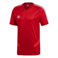 adidas Tiro 19 Trainingstrikot power red-white Herren