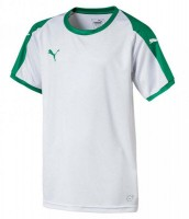 Puma LIGA Jr Trikot puma white-green Kinder