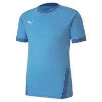 Puma teamGOAL 23 Trikot team light blue Herren