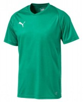 Puma LIGA Core Trikot pepper green-white Herren
