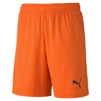 Puma teamGOAL 23 Knit Jr Shorts golden poppy Kinder