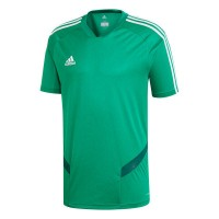 adidas Tiro 19 Trainingstrikot bold green-white Herren