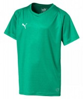 Puma LIGA Core Jr Trikot pepper green-white Kinder
