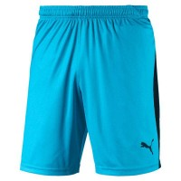 Puma LIGA Shorts aquarius-puma black Herren
