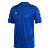 adidas Tiro 19 Trainingstrikot bold blue-white Herren