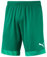 Puma CUP Shorts Jr pepper green-white Kinder