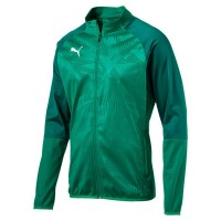 Puma CUP Training Poly Jacket Core pepper green-green Herren