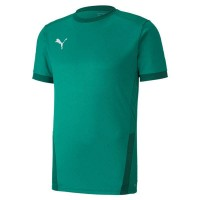 Puma teamGOAL 23 Trikot pepper green Herren