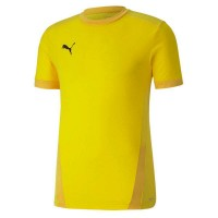 Puma teamGOAL 23 Trikot Kinder cyber yellow-spectra Kinder