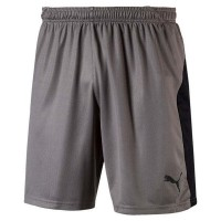 Puma LIGA Shorts steel grey-black Herren