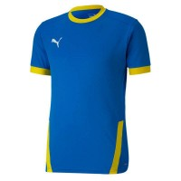 Puma teamGOAL 23 Trikot electric blue-yellow Herren