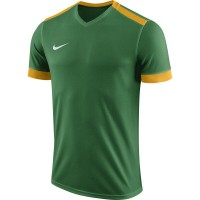 Nike Park Derby II Trikot PINE GREEN/UNIVERSIT Kinder