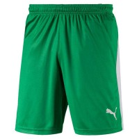 Puma LIGA Shorts bright green-white Herren