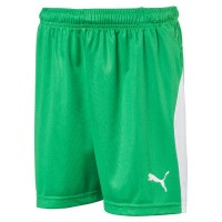 Puma LIGA Jr Shorts bright green-white Kinder
