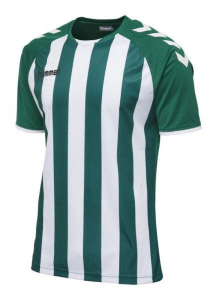Hummel Core Striped Trikot evergreen-white Kinder - Bild 1