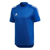 adidas Condivo 20 Trikot Training royal blue-white Herren