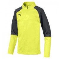 Puma CUP Training Jr 1/4 Zip Top Core fizzy yellow-asphalt Kinder