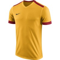 Nike Park Derby II Trikot UNIVERSITY GOLD/UNIV Kinder
