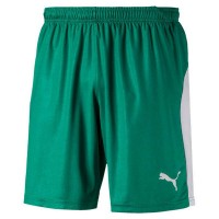Puma LIGA Shorts pepper green-white Herren