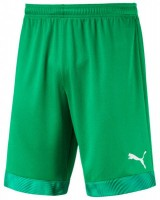 Puma CUP Shorts Jr bright green-violet Kinder