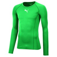 Puma LIGA Baselayer LS Funktionshirt pepper green Herren