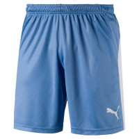 Puma LIGA Shorts silver lake blue Herren