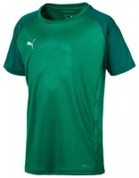 Puma CUP Sideline Core Tee Jr pepper green-green Kinder