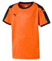 Puma LIGA Jr Trikot golden poppy-black Kinder