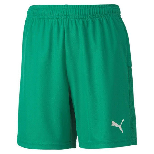 Puma teamGOAL 23 Knit Jr Shorts pepper green Kinder - Bild 1