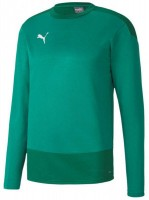 Puma teamGOAL 23 Training Sweat green pepper-green Herren