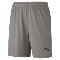 Puma teamGOAL 23 Knit Jr Shorts steel grey Kinder