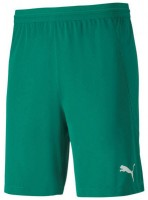 Puma teamFINAL 21 Knit Shorts pepper green Herren