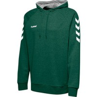 Hummel Go Cotton Kapuzenpullover evergreen Kinder